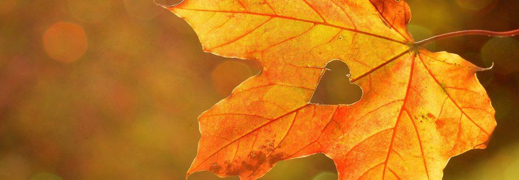 5-motivi-per-organizzare-il-matrimonio-in-autunno