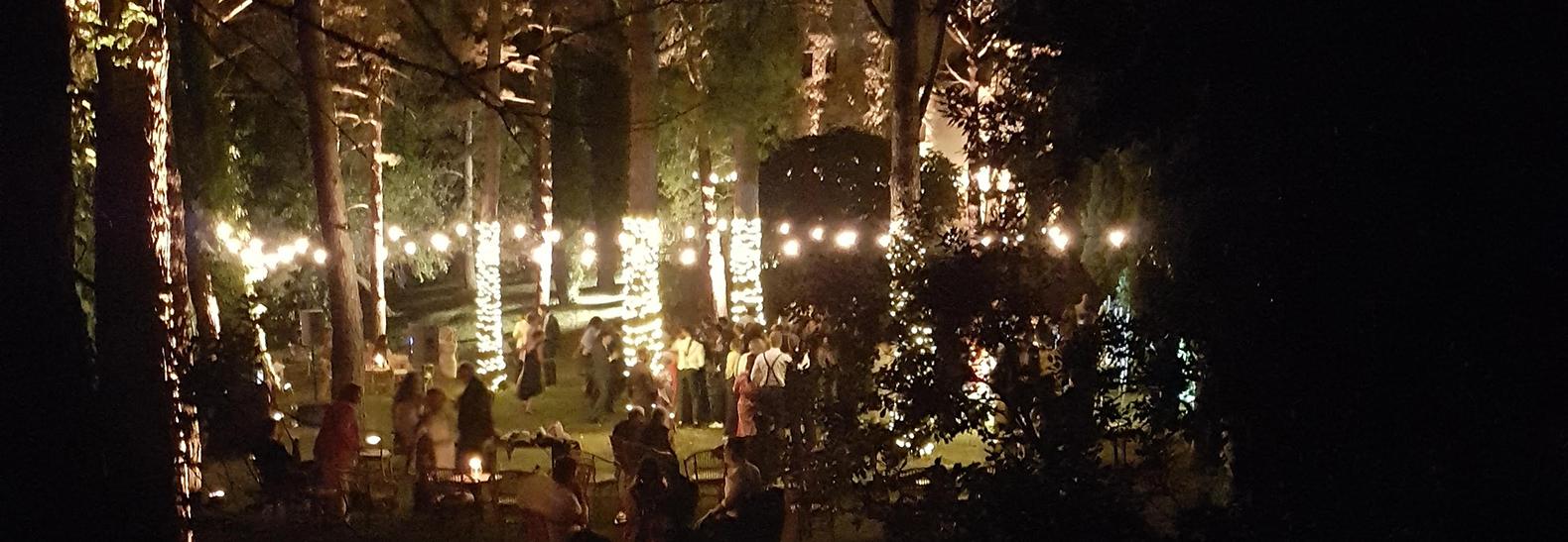 organizzare un matrimonio nel bosco in toscana